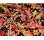 Штапель желто-розовые цветы 0048